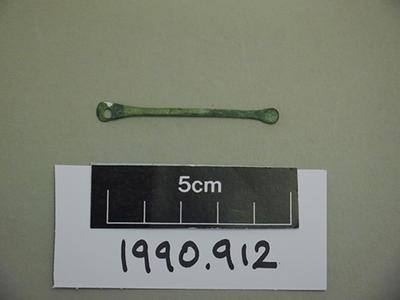 ligula